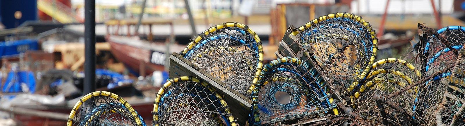 lobster-pots-344347_1920